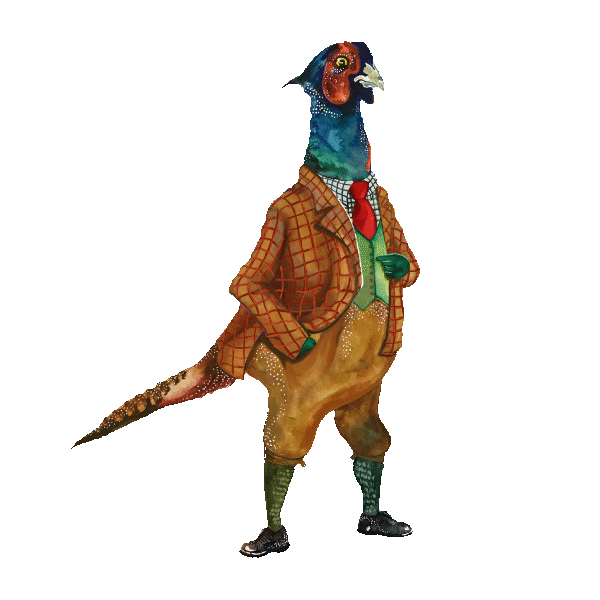 an illustration of a pheasant dressed in a hunting suit