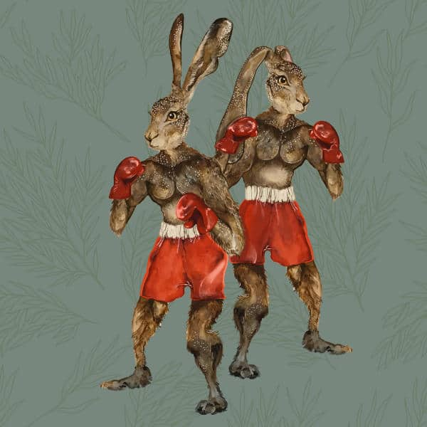 An illustration of The Elm Tree characters Horace & Herbert. They are hares in boxing outfits